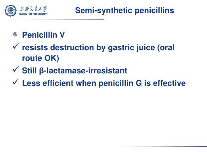 Semi-synthetic penicillins