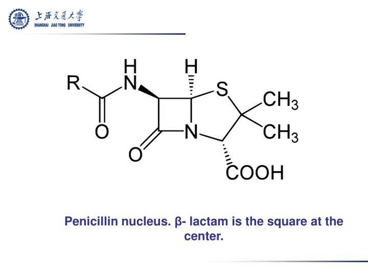 Penicillin nucleus.