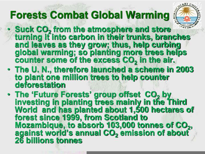 Forests Combat Global Warming