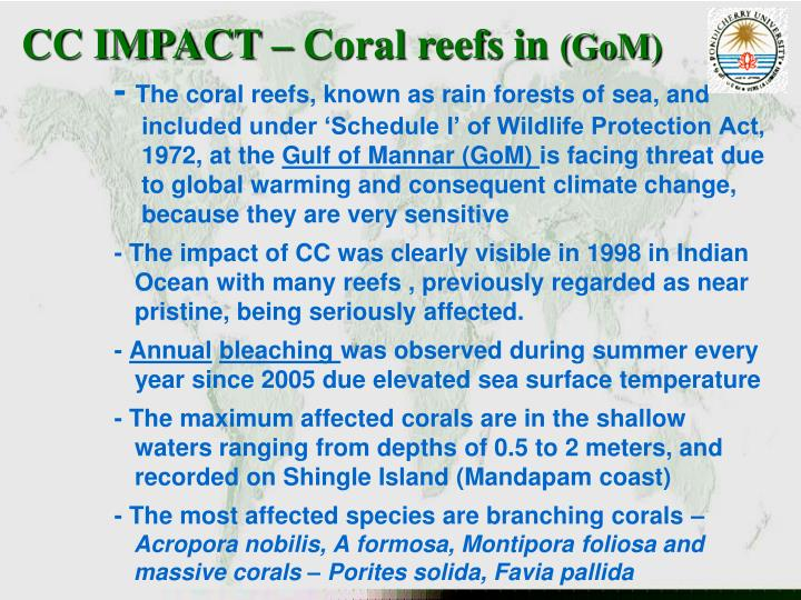 CC IMPACT – Coral reefs in