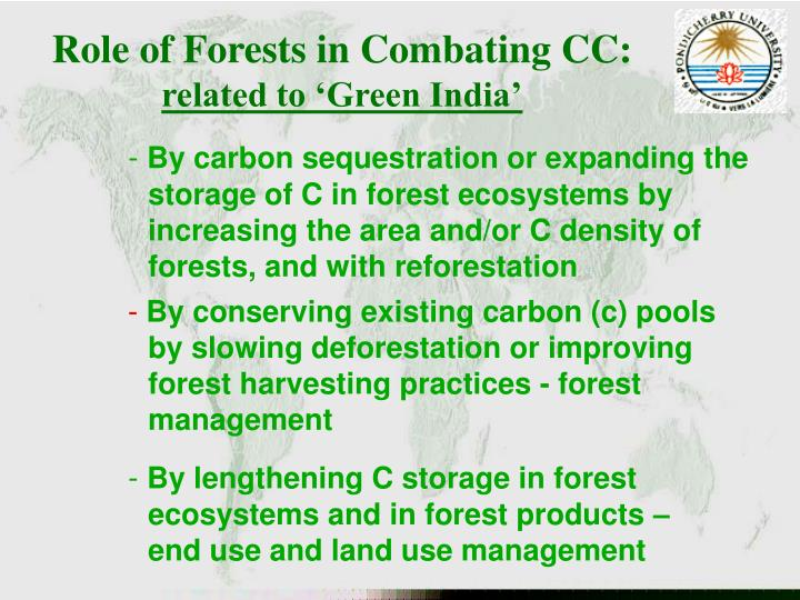 Role of Forests in Combating CC: