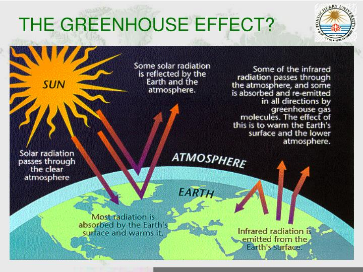 THE GREENHOUSE EFFECT?