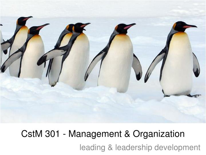 Cstm 301 management organization