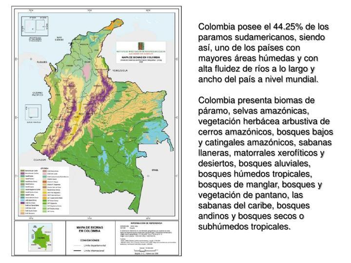 Colombia posee el 44.25% de los paramos sudamericanos, siendo as, uno de los pases con mayores reas hmedas y con alta fluidez de ros a lo largo y ancho del pas a nivel mundial.
