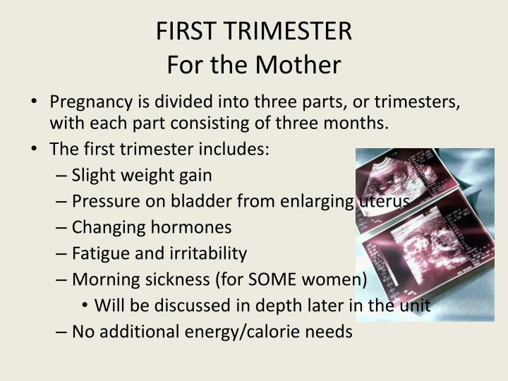 Ppt unit 4 prenatal issues powerpoint presentation id for Eating fish during pregnancy first trimester