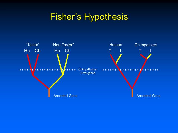 Fisher's Hypothesis