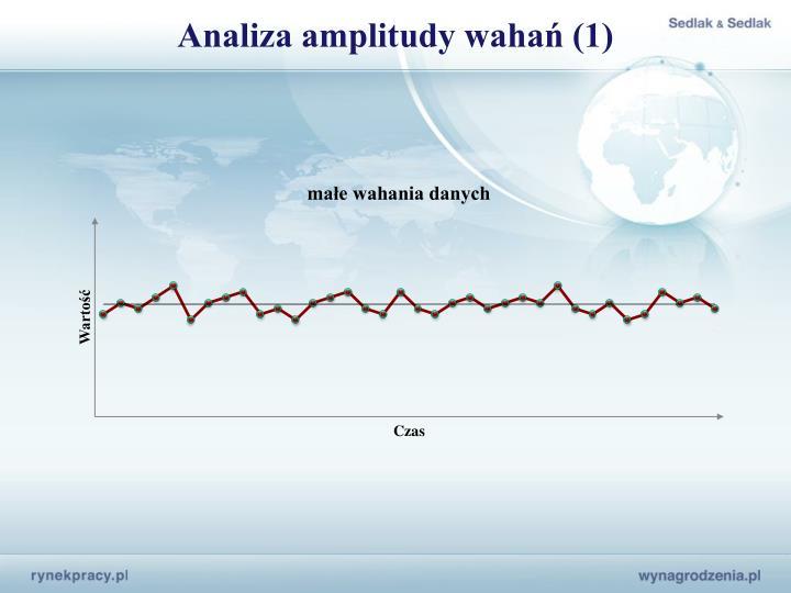 Analiza amplitudy wahań (1)
