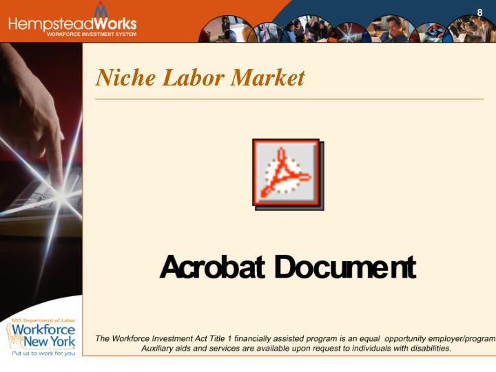 Niche Labor Market