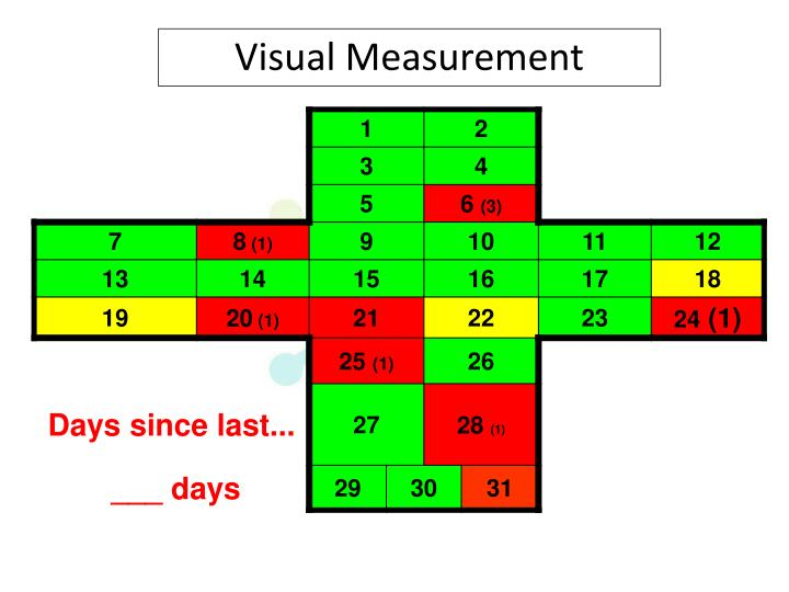 Visual Measurement