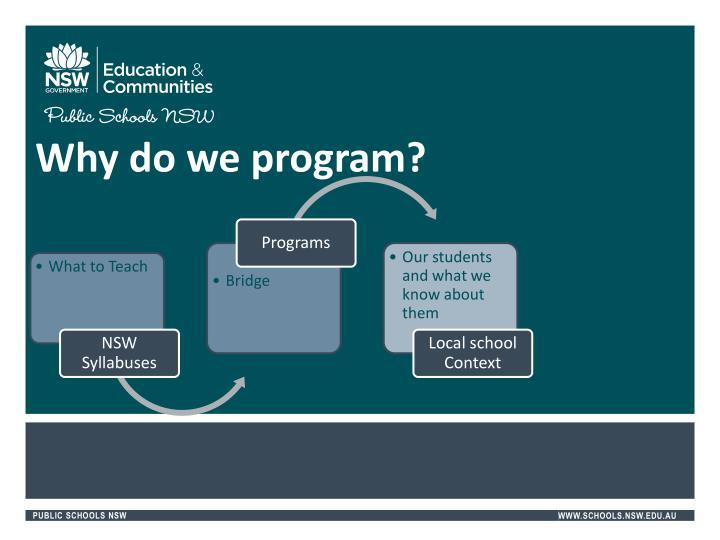 Why do we program?