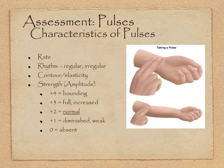 Assessment: Pulses