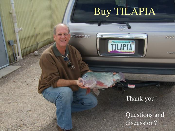 Buy TILAPIA
