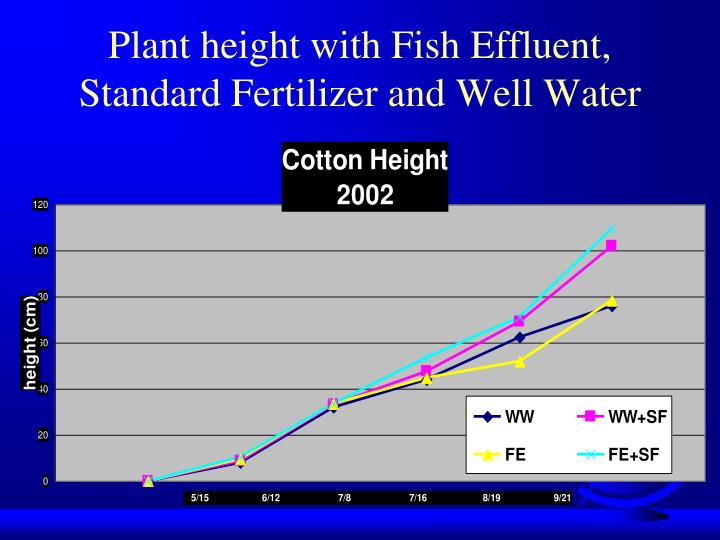Plant height with Fish Effluent, Standard Fertilizer and Well Water