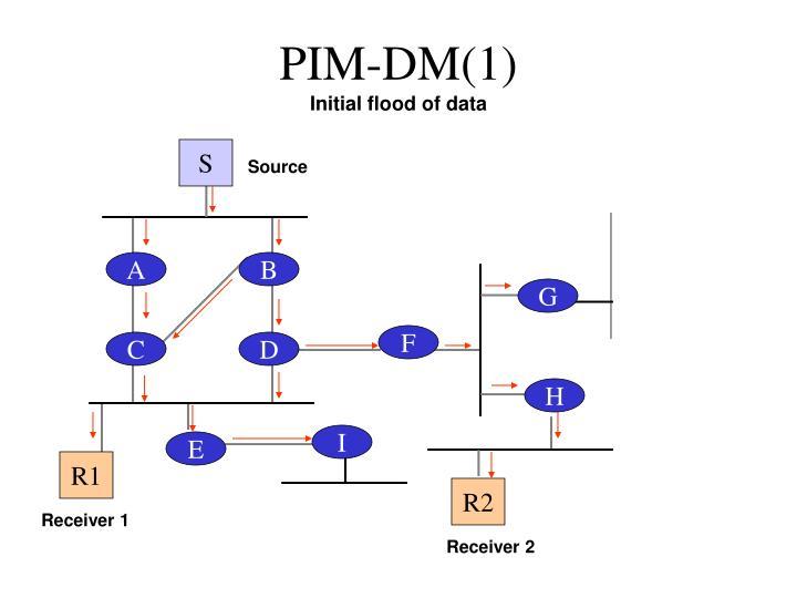 PIM-DM(1)