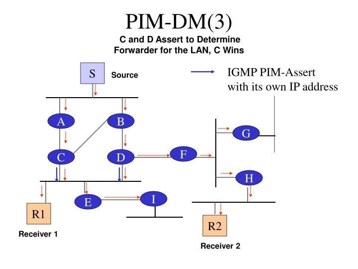 PIM-DM(3)