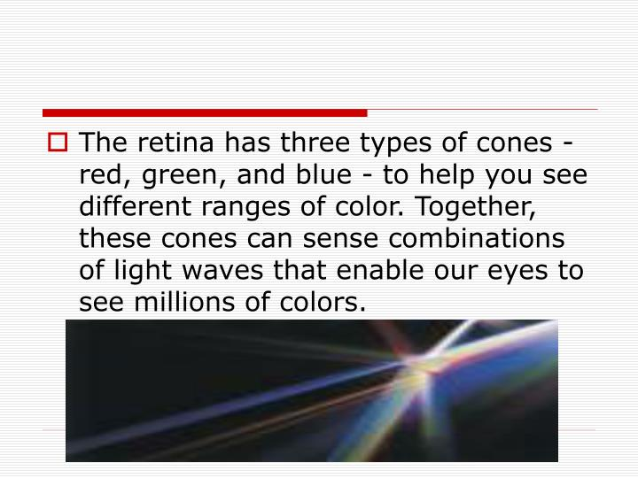 The retina has three types of cones - red, green, and blue - to help you see different ranges of color. Together, these cones can sense combinations of light waves that enable our eyes to see millions of colors.