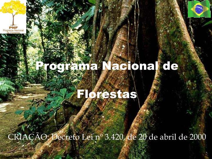 Programa Nacional de Florestas