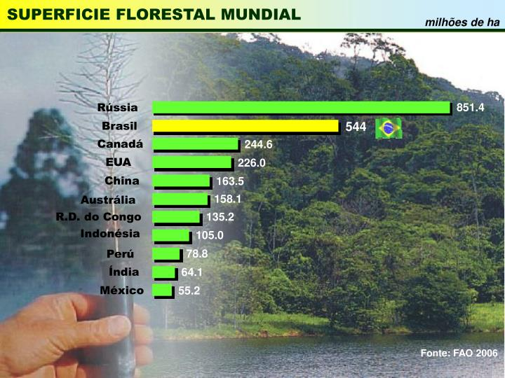 Superficie florestal mundial