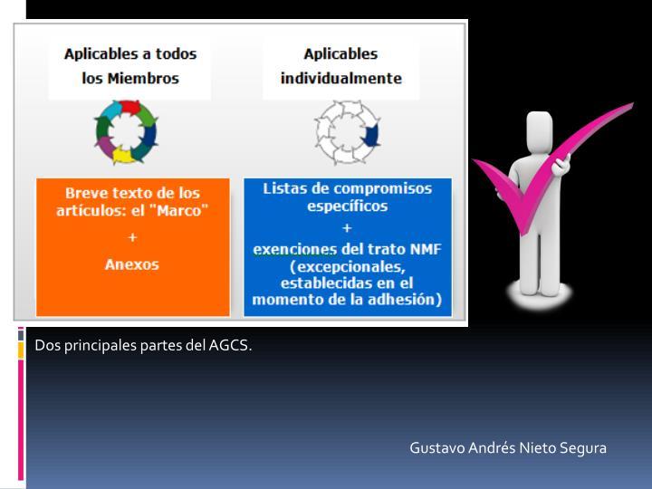 Dos principales partes del AGCS.