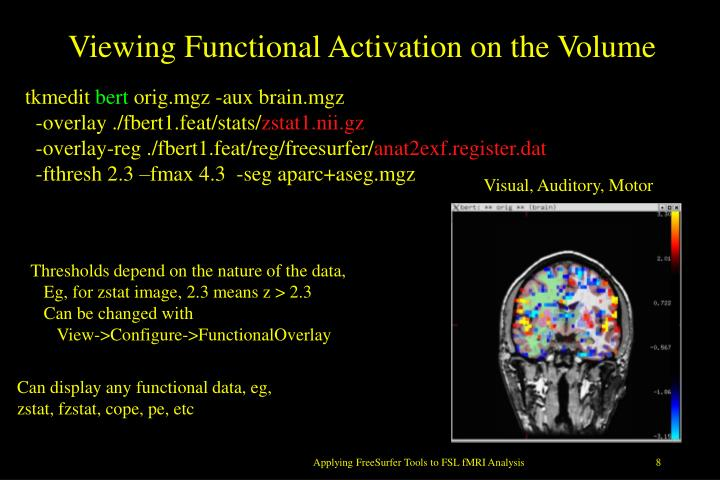 Viewing Functional Activation on the Volume
