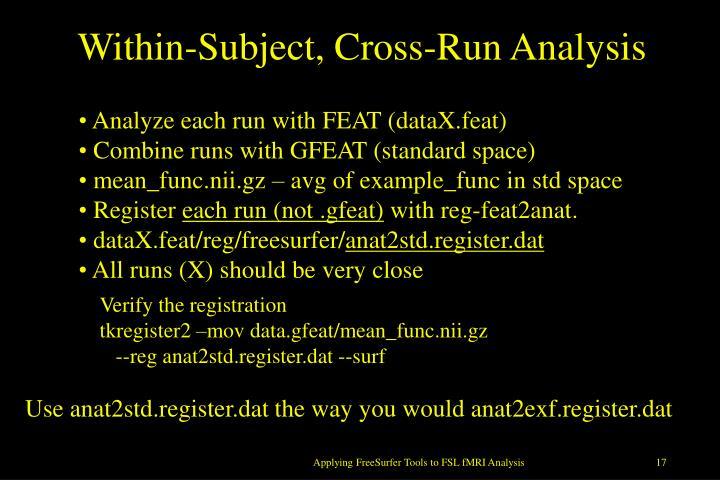 Within-Subject, Cross-Run Analysis