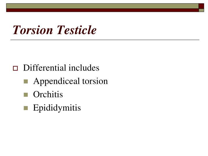 Torsion Testicle