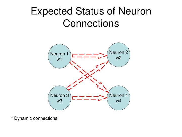 Expected Status of Neuron Connections