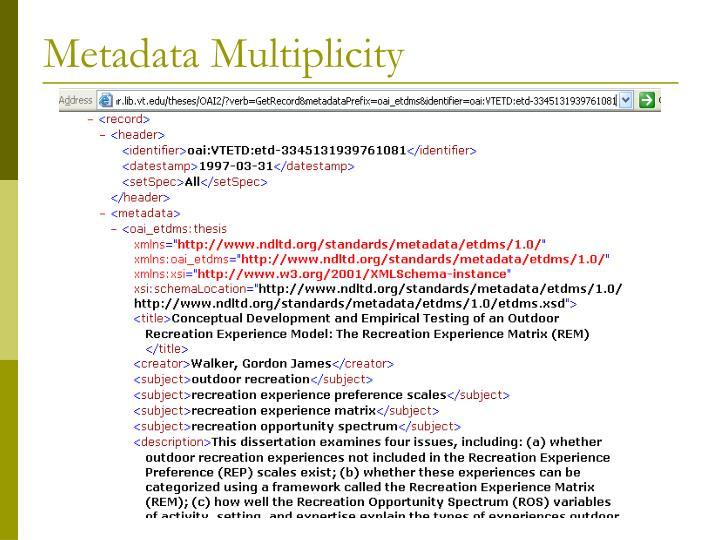 Metadata Multiplicity
