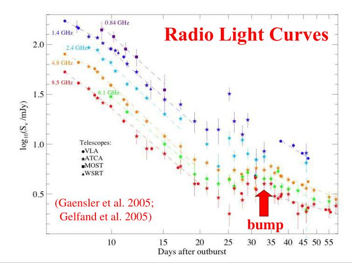 Radio Light Curves