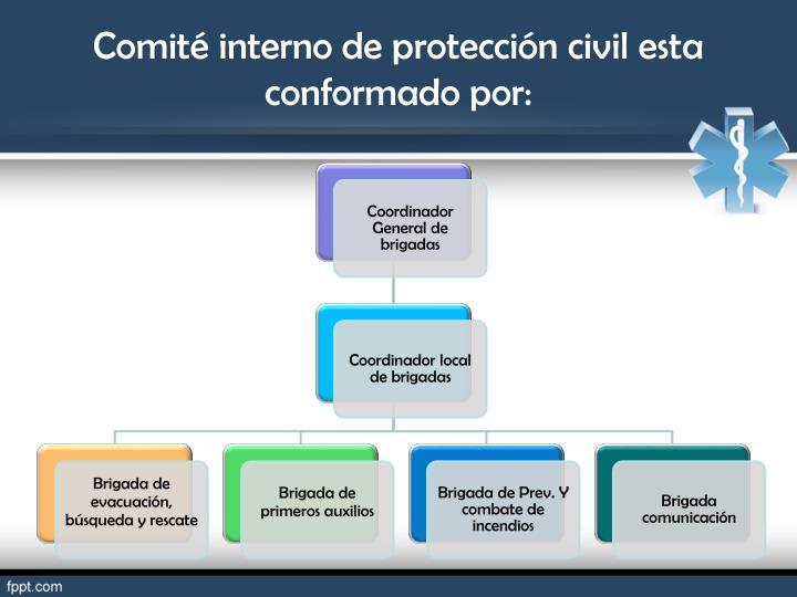 Comité interno de protección