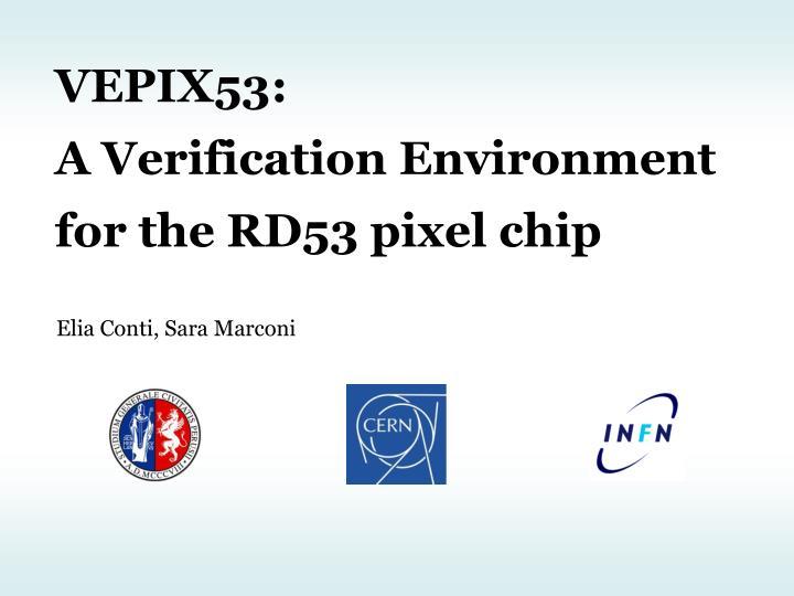 VEPIX53: