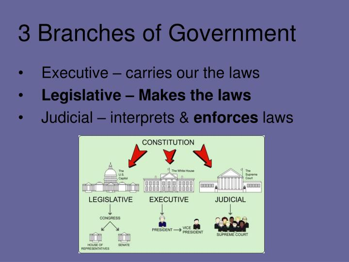The 3 Branches of Government: Executive, Legislative, Judicial