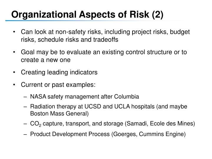 Organizational Aspects of Risk (2)