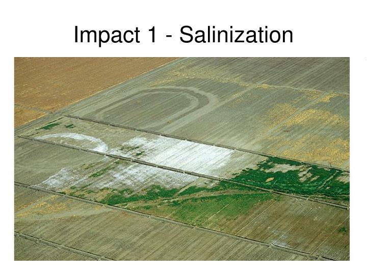 Impact 1 - Salinization