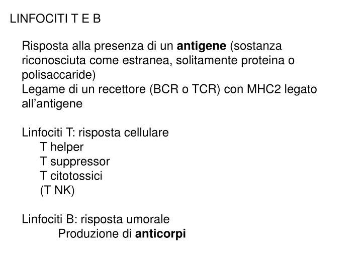 LINFOCITI T E B