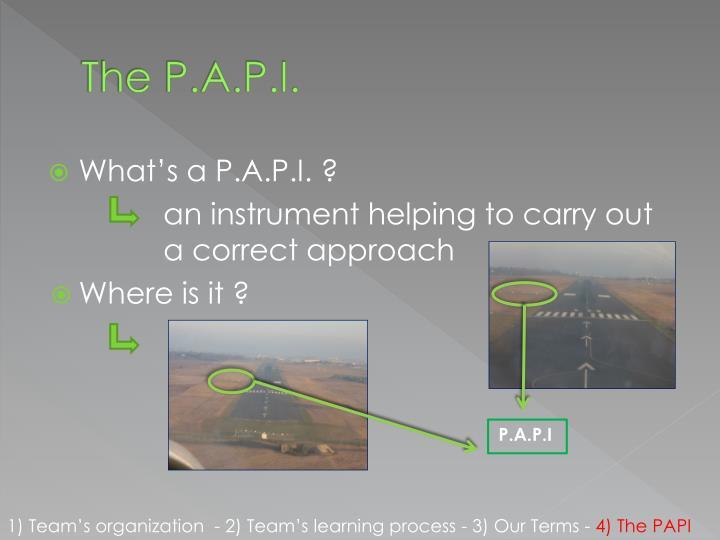 The P.A.P.I.