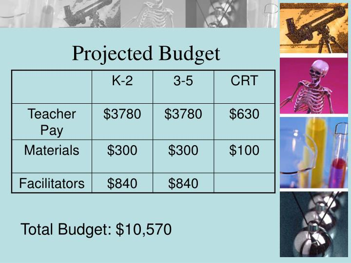 Projected Budget