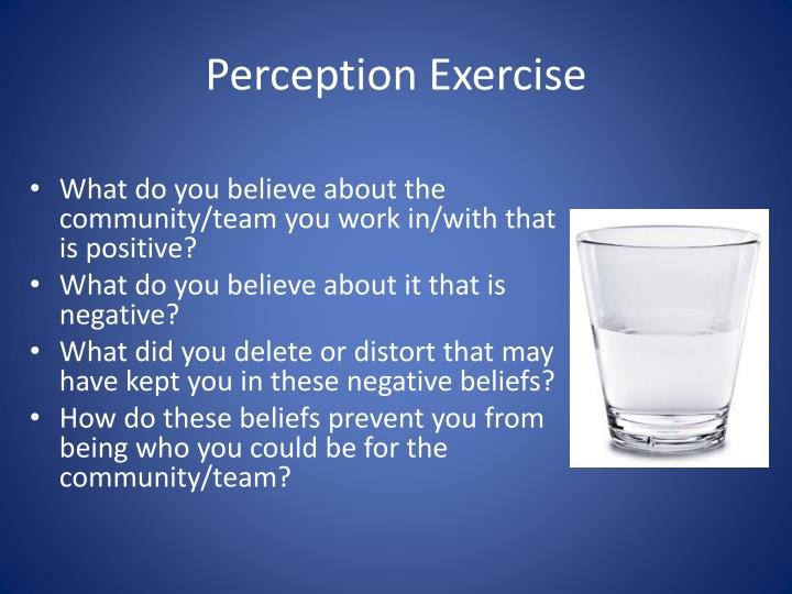 Perception Exercise