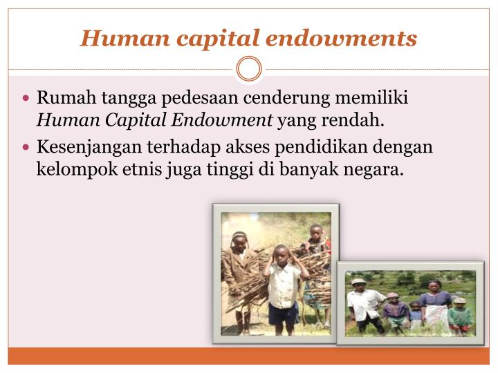 Human capital endowments