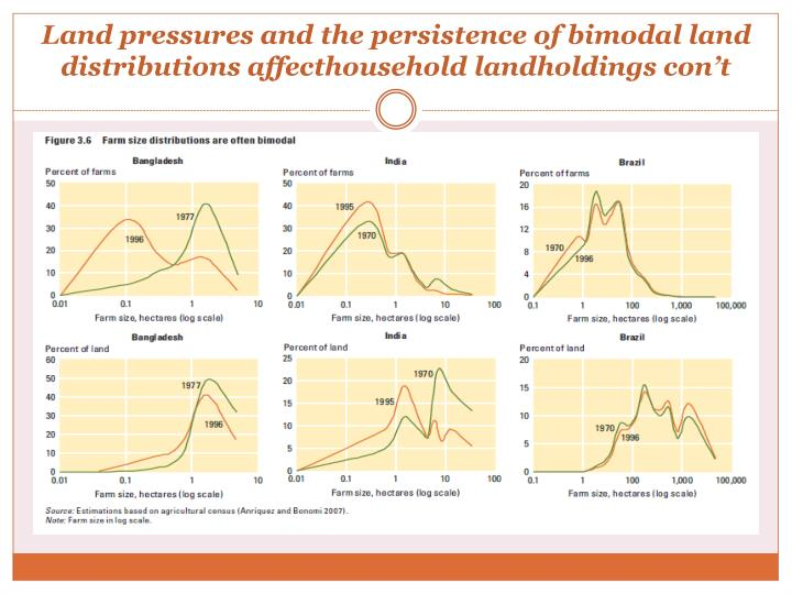 Land pressures and the persistence of bimodal land distributions
