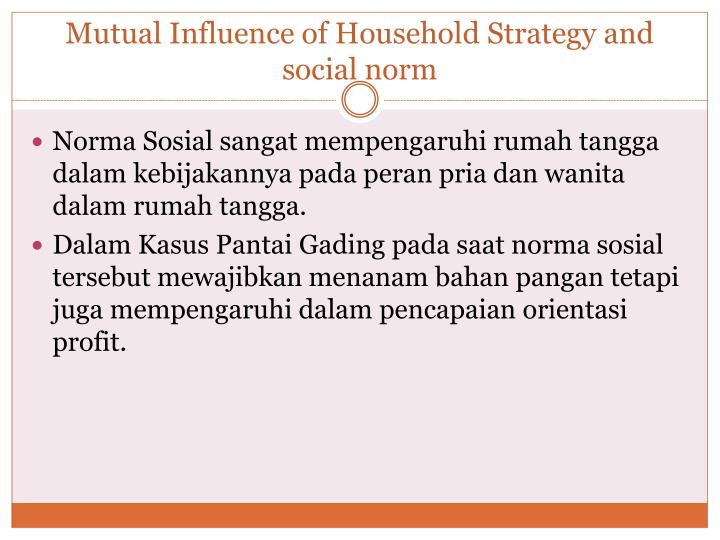 Mutual Influence of Household Strategy and social norm