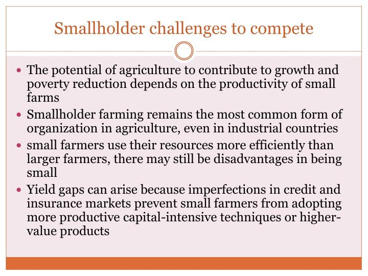 Smallholder challenges to compete