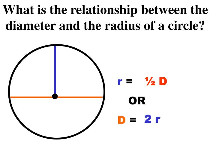 What is the relationship between the diameter and the radius of a circle?