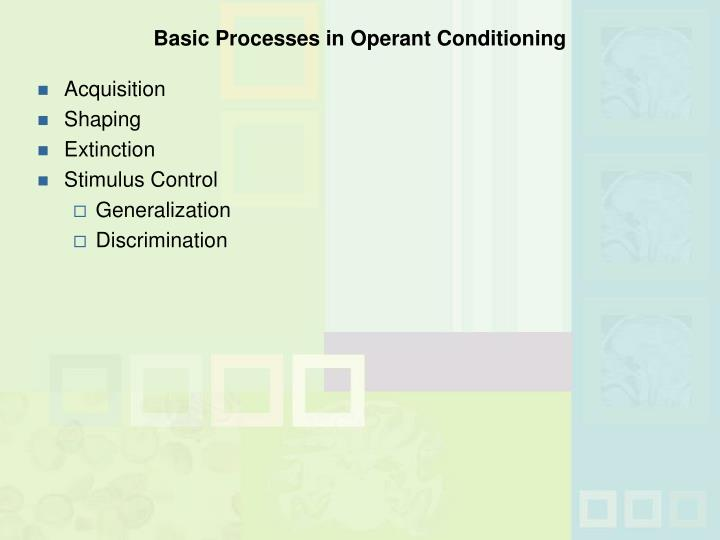 Basic Processes in Operant Conditioning