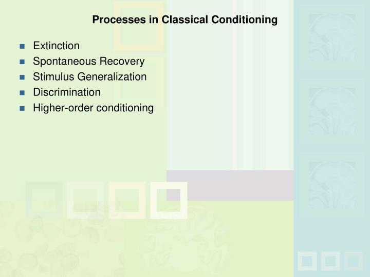 Processes in Classical Conditioning