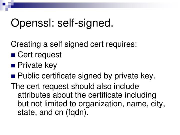 Openssl: self-signed.