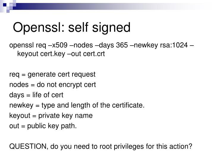 Openssl: self signed