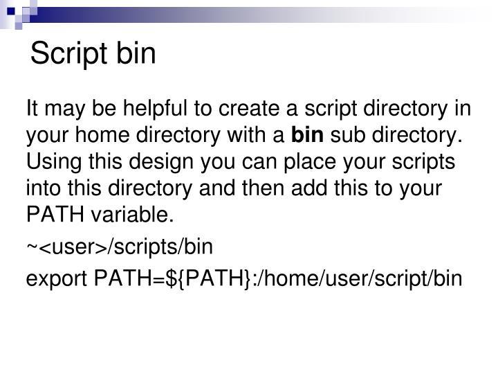 Script bin