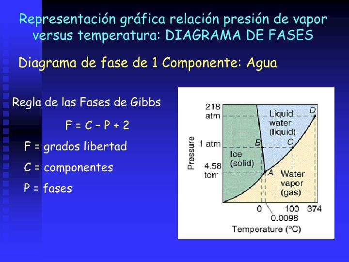 Representación gráfica relación presión de vapor versus temperatura: DIAGRAMA DE FASES