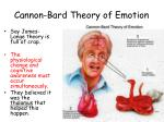 cannon bard theory of emotion
